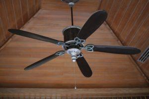 Ventilator vs Rollo