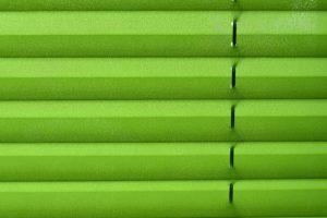 Plissee grün